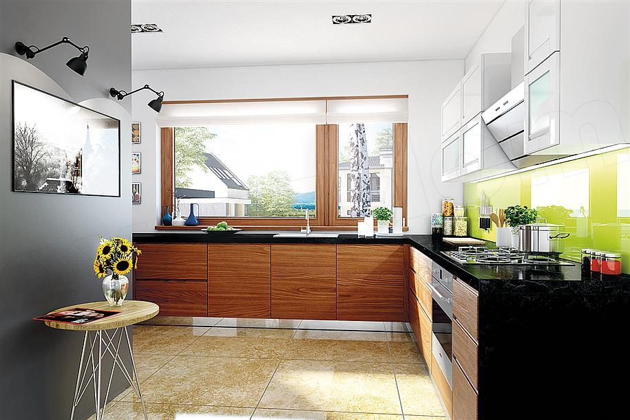 Prizemna kuća sa prostranom terasom i garažom (3)
