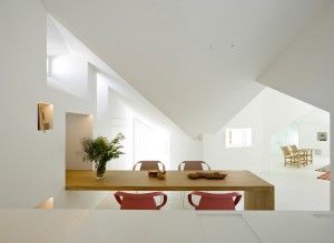 beli stan (3)